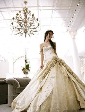 This is the first dress I ever liked by pnina tornai since then she has become more and more creative.She s so talented.