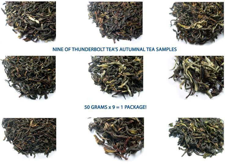 Autumn Flush Darjeeling Tea - Nine Darjeeling Tea samples offer