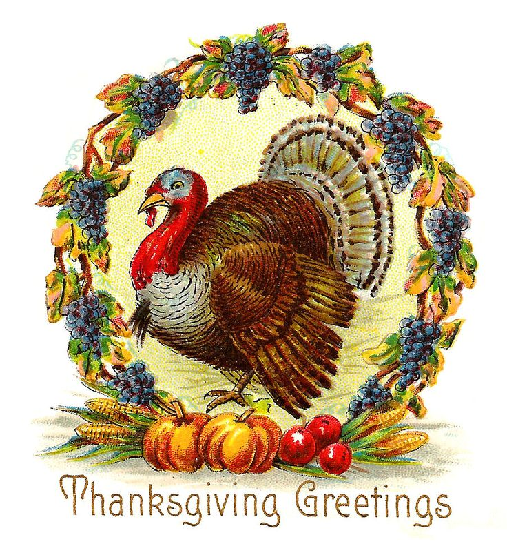 thanksgiving vintage pictures | Free Thanksgiving Day Graphic: Thanksgiving Turkey with Wreath of ...