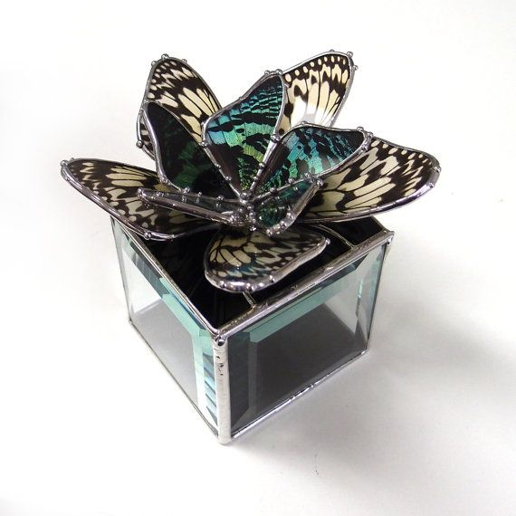 Sunset Moth and Paperwhite Butterfly wings are arranged like petals to create a lovely flower. What a special place to store your most precious treasures. This box would be an amazing way to propose to a butterfly lover, and would also be a wonderful way to present the rings at the wedding, a unique alternative to the ring bearer pillow! Ive kept the flower the focus, and set it in a polished black art glass, and created a clear beveled box as the base. An invisible hinge tube runs alon...