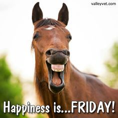 Happy Friday from all of your friends at the Rancho!!!