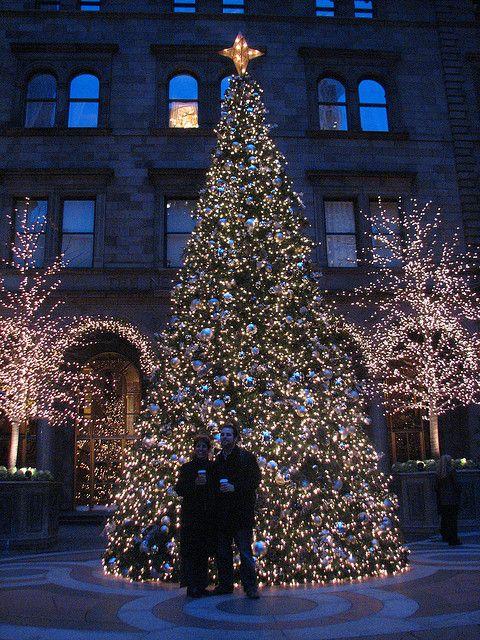 New York City Christmas Lights | New York Palace Hotel Christmas Tree Lights - New York & 110 best NYC Christmas inspiration images on Pinterest | New york ... azcodes.com
