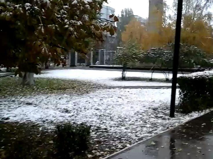 Первый снег! https://youtu.be/t32mTodFWBw
