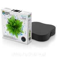 Hydrobox 4.L #hydrobox #hydroboxpl #nawadnianie #hodowlaroslin #pielegnacja #roslina #kwiaty #ogrod #nature #flower #plant #green