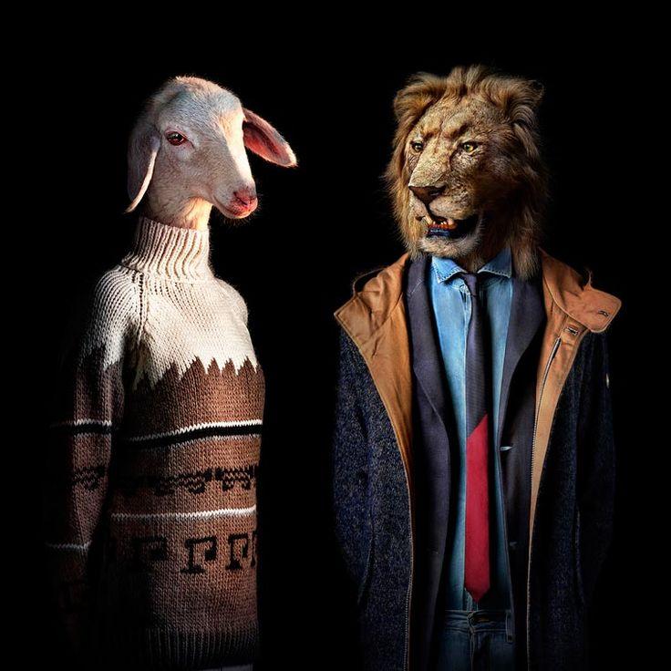 Les jolis portraits d'animaux humanisés de l'artiste et photographe espagnol Miguel Vallinas, qui imagine les looks et les tenues vestimentaires des animaux sa