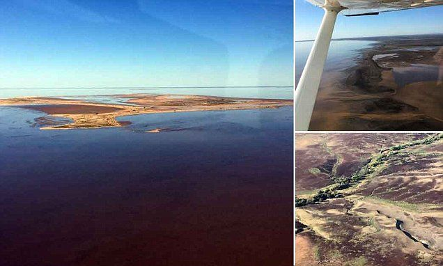Lake Eyre is brought to life as heavy rainfall soaks South Australia