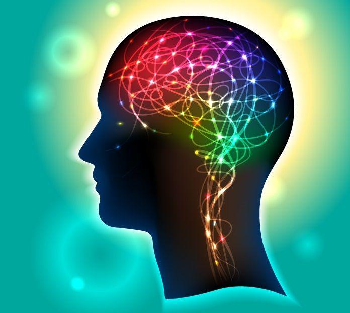 Los 2 Principios de aprendizaje que subyacen al comportamiento humano