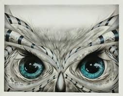 Image result for owl eyes tattoo meaning