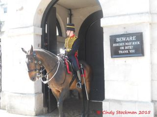 The King's Troop Royal Horse Artillery stand guard.