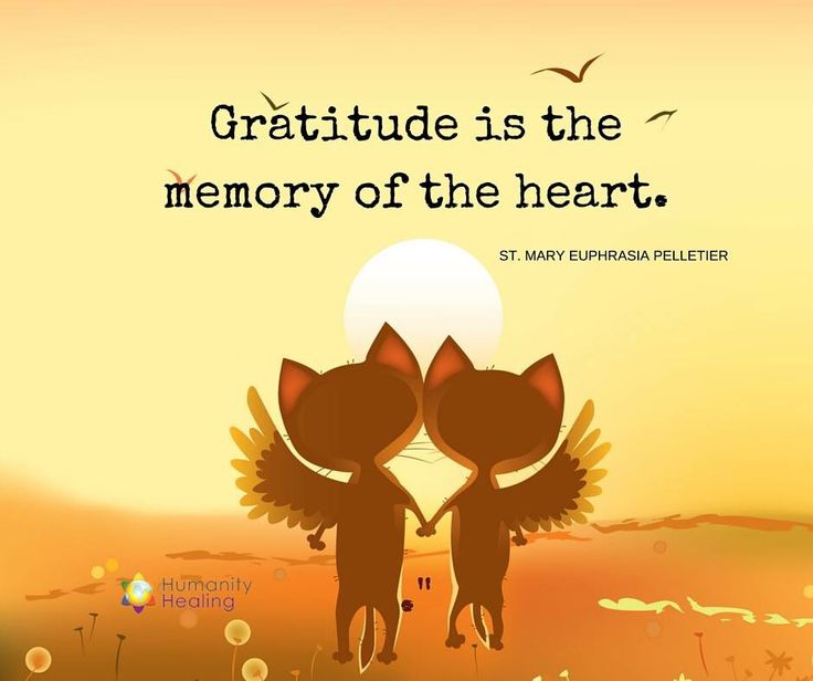 essay on gratitude is the memory of the heart custom paper sample  free essays on gratitude first of all i would like to express my gratitude  from