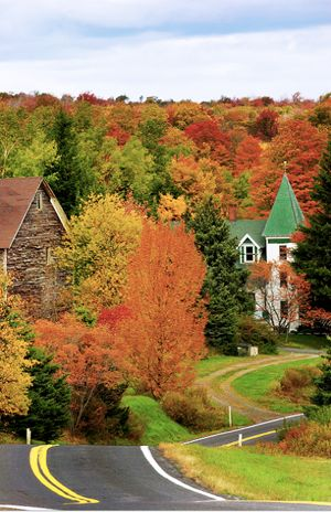 The Catskills – Photo by Lindsay Silverman - Leaf Peeping Guide - Are you a Leaf Peeper? I am!