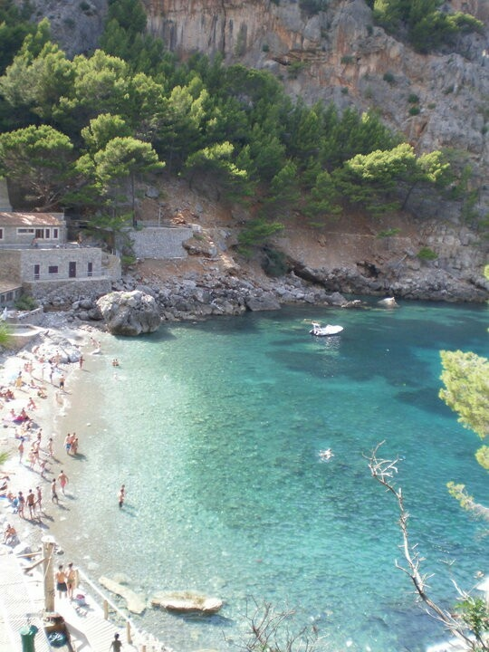 Mallorca.  I was here once with my ex so naturally, this will be the homewrecker's next trip to plan or perhaps it will be the Canary Islands.  Don't think I don't have you figured all out.  I'm glad I had the opportunity to go to both, even if it was with an asshole.