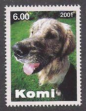 Dog Photo Head Study Portrait Postage Stamp Wet GOLDEN RETRIEVER Komi  2001 MNH