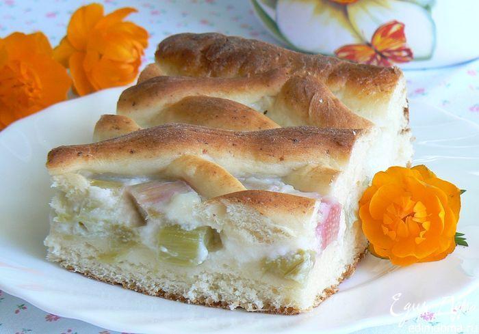 Творожный пирог с ревенем Вкусный творожный пирог с легкой кислинкой, угощайтесь! #едимдома #готовимдома #кулинария #выпечка #вкусно #ревень