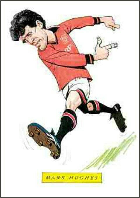 Mark Hughes of Man Utd in cartoon mode.