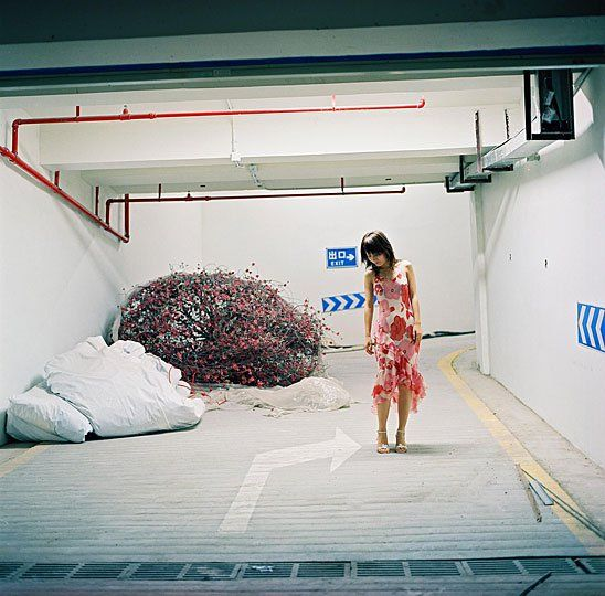 Yang Yong | msuphotoresources