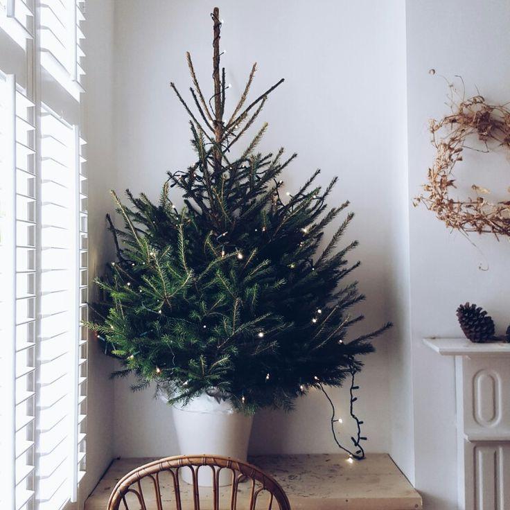 Simple. Littlegreensheds tree