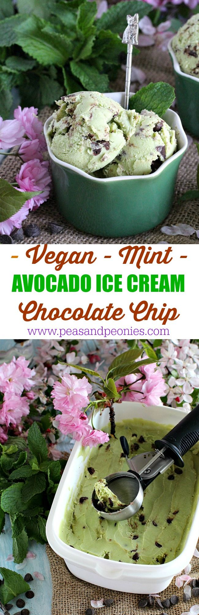 Vegan Mint Chocolate Chip Avocado Ice Cream has only 5 ingredients and no ice cream machine is needed. It's creamy, refreshing and also healthier.