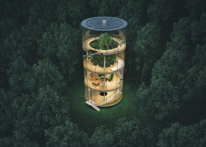 Translucent Home Built Around a Tree in a Kazakh Forest - My Modern Met