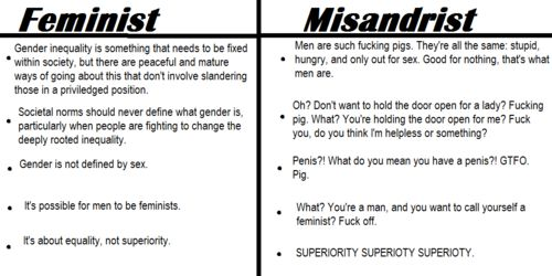 is feminism bad essay