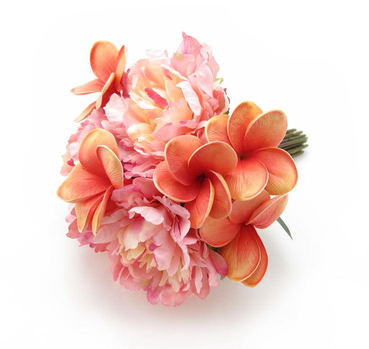 A medium posy of coral frangipanis and sunset peonies. Find your perfect wedding flowers at https://www.loveflowers.com.au