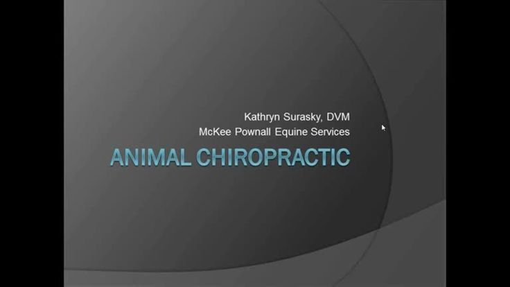In this recorded webinar, Dr. Kathryn Surasky of McKee-Pownall Equine Services talks about chiropractic services for your animals. For more information visit w…