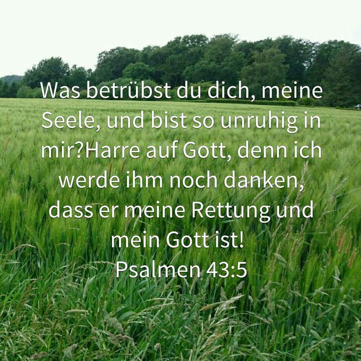 Was bist du so unruhig in mir mein Herz. Was betrübst Du dich meine Seele. Harre auf Gott....Psalm .....Bibel
