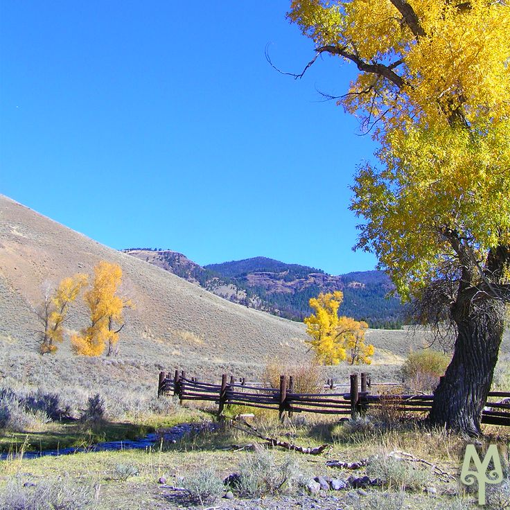 When is the best time to visit The Park in the Fall? Read this Montana Treasures blog post.