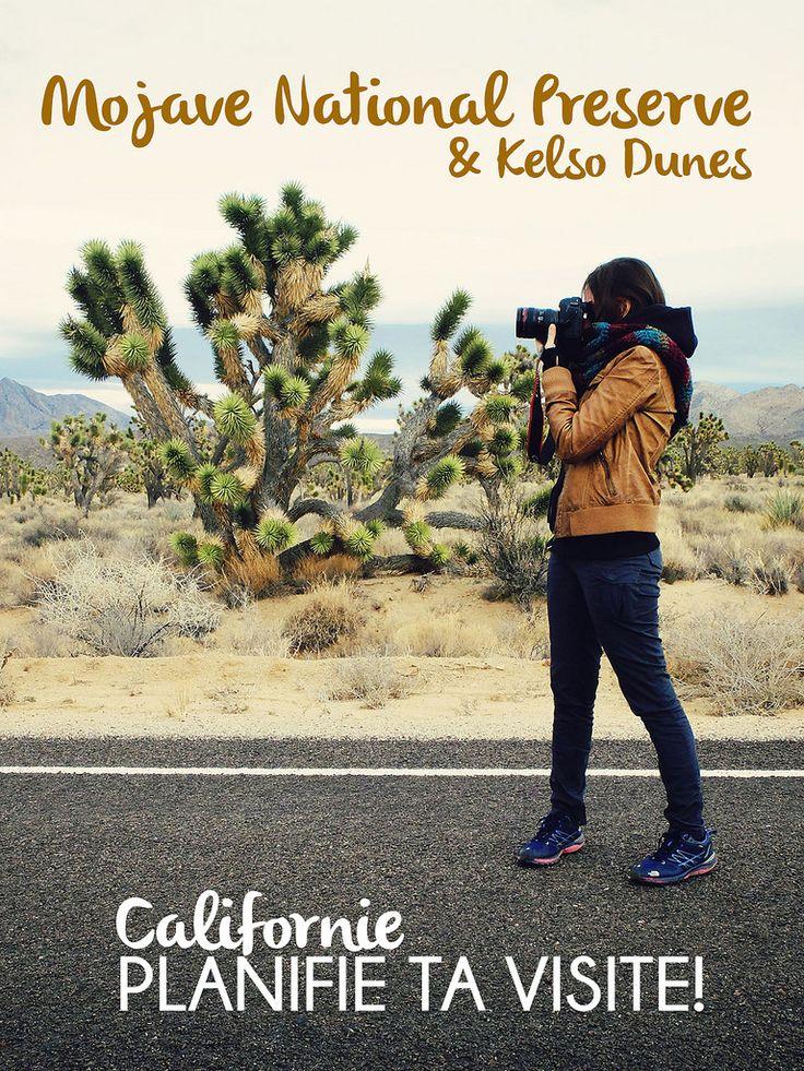 Californie // Désert des Mojaves - Claudia La Roadtrippeuse #Californie #Mojaves #désert #California #roadtrip  #travel #voyage #backpack #USA