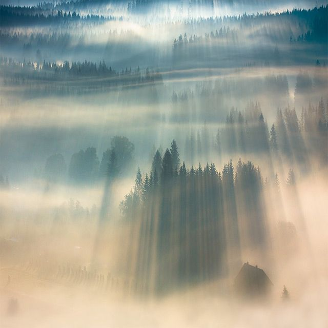 Fog Landscapes by photographer Boguslaw Strempel.    Simply awesome. :)
