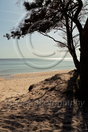 Ystad beach  framcaphotography.com