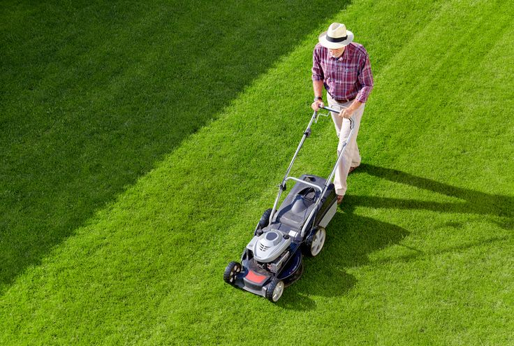 Read the mention blog about Choose a Finest Lawn Mowing Service Provider to Take Care of Your Garden. CALL on 0407685704 for Effective and Efficient Lawn Mowing Services in Melbourne.