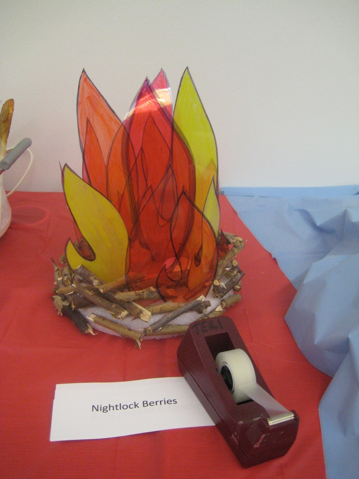 'Fire' centerpiece for Hunger Games party.  I drew flames on overhead transparencies & colored them with Sharpies, then cut out.  The base is a piece of styrofoam in which I cut slits to insert the base of each flame.  I wish I'd had more twigs to hot glue around the edges to hide the styrofoam.  I left room between the flames to place battery-operated votive candles to give it a glow.  Total cost was $2 for the styrofoam - everything else I had on hand.
