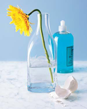 eggshell uses. Cleaning vases and other hard to clean objects