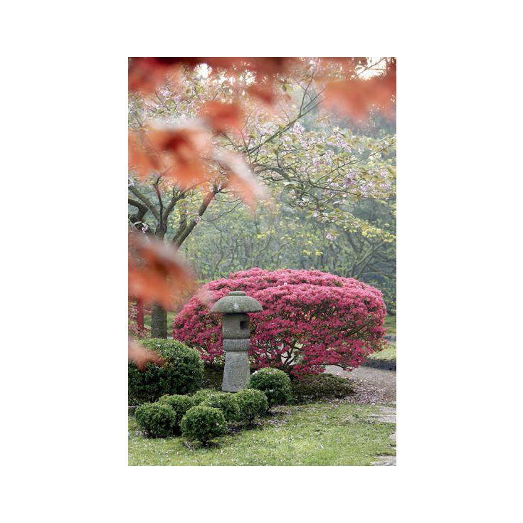 Beautiful Japanese Garden wall Art canvas from Darlin NZ!