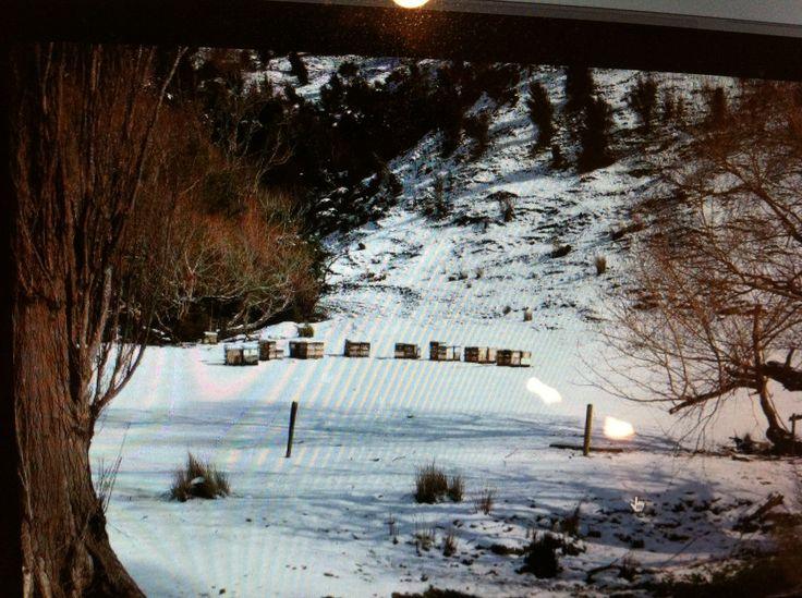 2013 winter,  Wairarapa.
