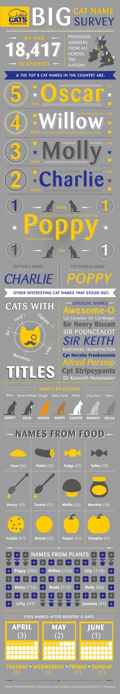Find out the most popular cat names around the UK - including some of the more funny and unusual names!