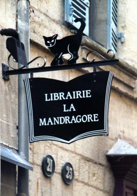 Librairie La Mandragore ~ 24 Perigueux (Mandrake bookstore - a special place for Harry Potter fans.)