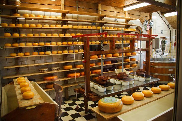 fabrica de queso