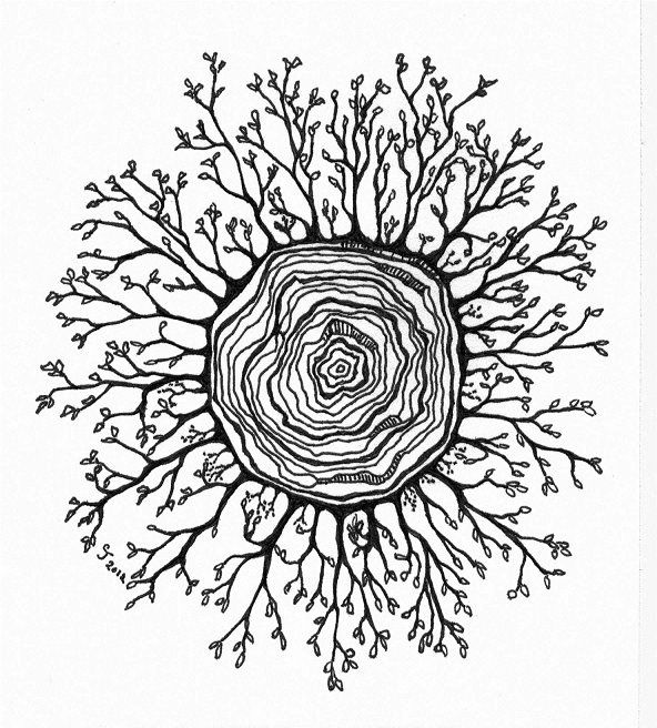 Grow from the center