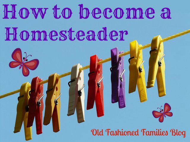 how to become a homesteader homesteading pinterest