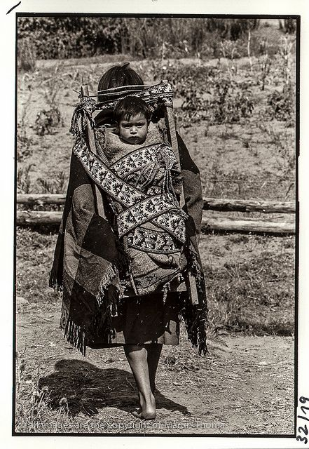 Kupulwe Mapuche