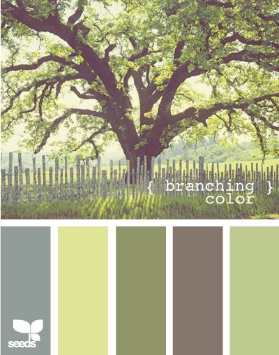 This is so serene. Foxy Inspirations: Color Inspiration! Design Seeds-for those who love color!