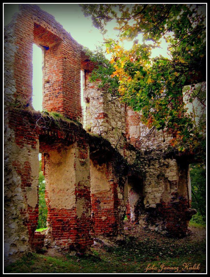 Ruiny zamku Pileckich, Bychawa, Poland