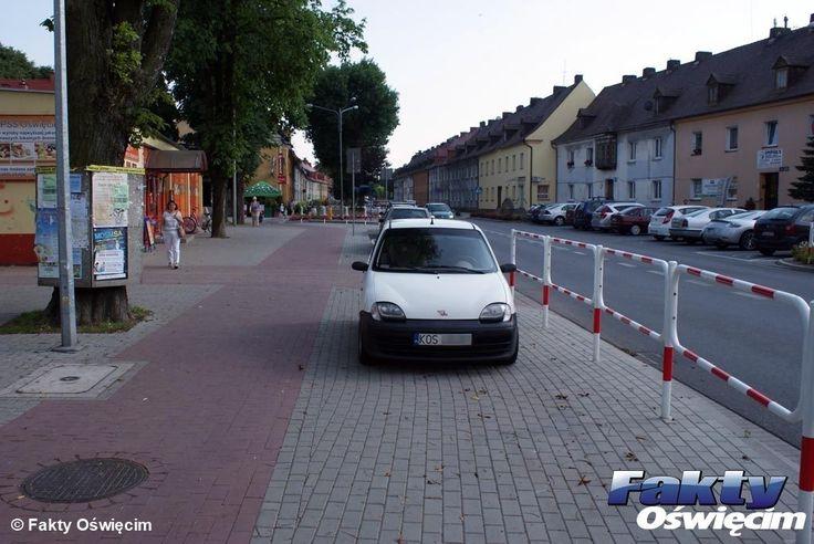 Zmasowany atak Karnych Łosi – FOTO #Oświęcim #łoś #karnyłoś #karnełosie #parkowanie
