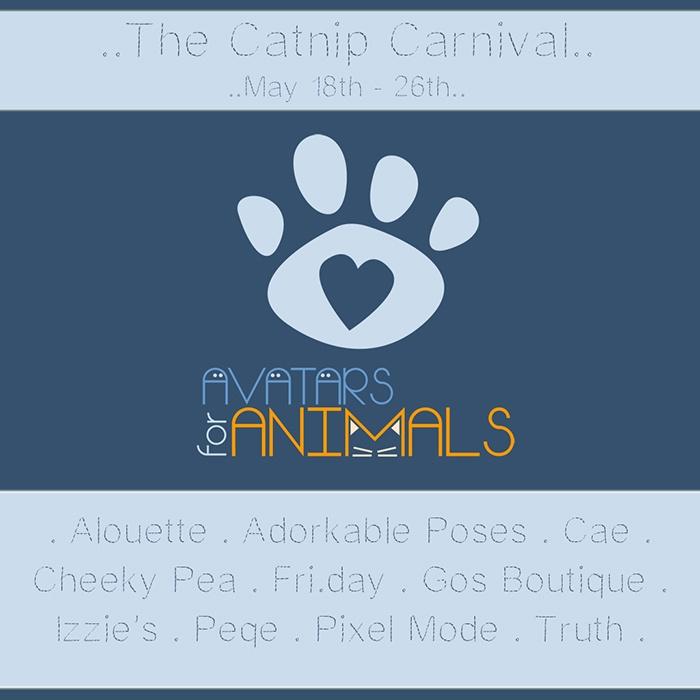The Catnip Carnival