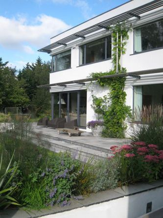 Planting on the house and terrace: Wisteria, Nepeta, Sedum, Herbs. http://www.howbertandmays.ie/foxrock-wild-garden