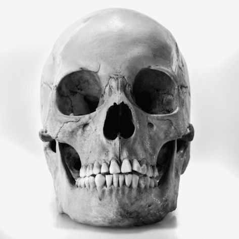 Since Ophelia's funeral takes place in a graveyard and the grave diggers find two skulls I chose this simple skull. However there would also be another skull that the grave digger found that resembles someone Hamlet use to know. There would also be other bones lying around that were thrown up during the digging process.