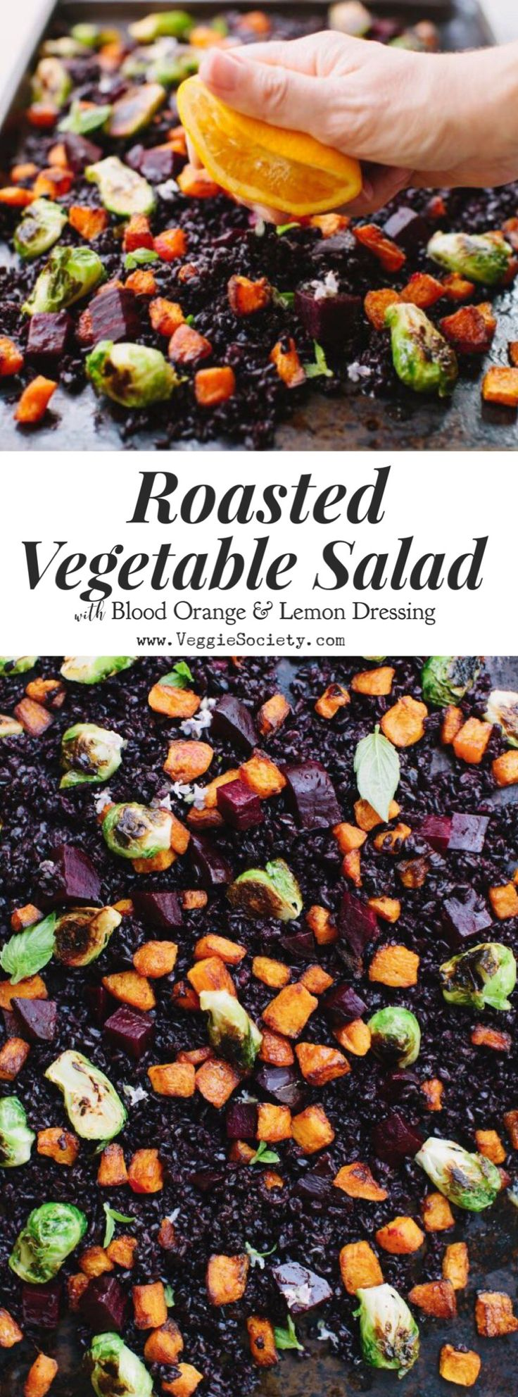 Roasted Vegetable Salad Recipe with Blood Orange and Lemon Dressing. Heirloom black rice topped with roasted beets, butternut squash and Brussel sprouts | VeggieSociety.com @VeggieSociety