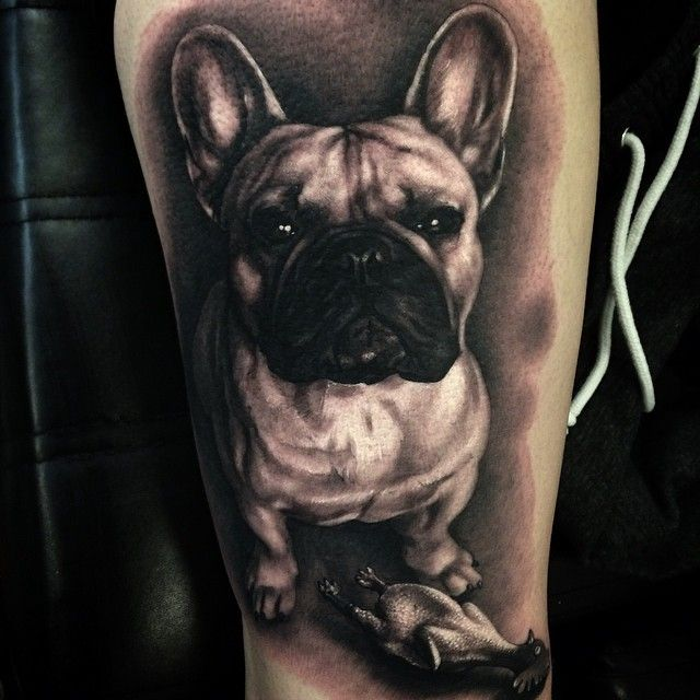 I was so happy to tattoo adorable Sixten today! He is a wonderful French Bulldog…
